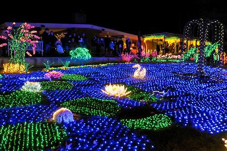 Western Washington Fun- Bellevue Botanical Gardens light up for Christmas.  This place is spectacular during the holidays with over a million lights. - Garden D'Lights - Holiday Light Show At Bellevue Botanical Gardens