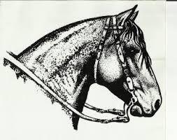 resultado de imagem para desenho cavalo crioulo cavalos pinterest