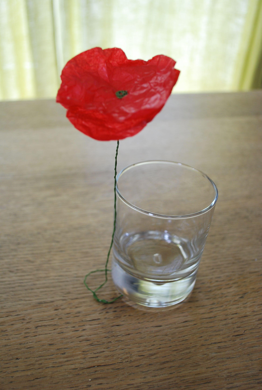 Diy Coquelicots En Papier De Soie Mode D Emploi Flowers Diy
