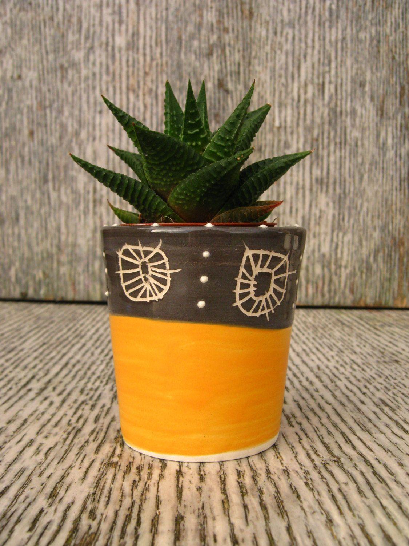 Small Ceramic Succulent Cactus P*T Planter In Charcoal 640 x 480