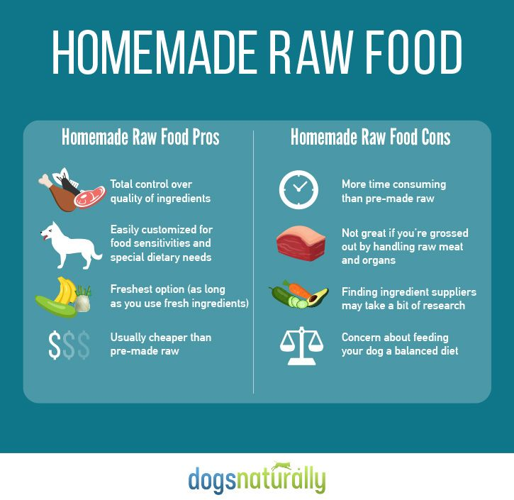 Raw dog food homemade vs store bought raw food for dogs homemade vs premade tips for healthy natural dog food forumfinder Gallery