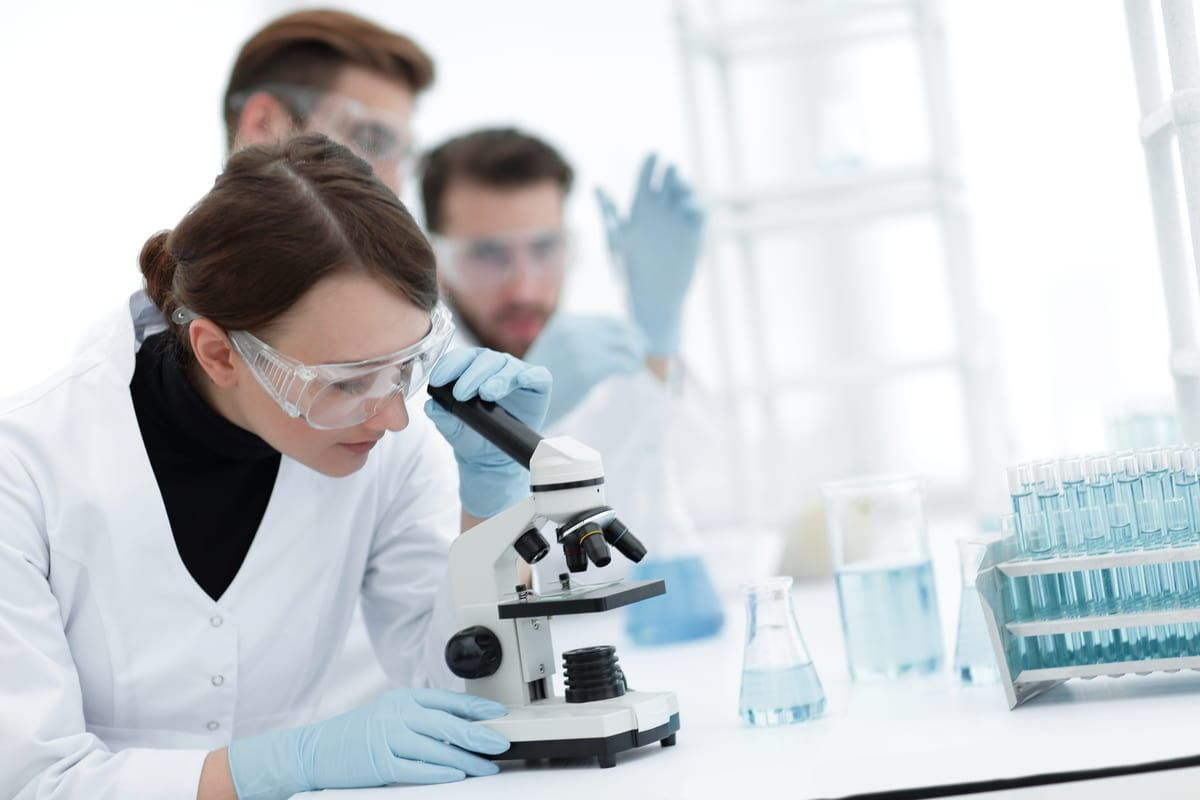 Life Sciences Field Assistant Bsc Candidates With A Background In Life Sciences Are Encouraged To Attend The Walk In A Life Science Microbiology Chemistry Jobs