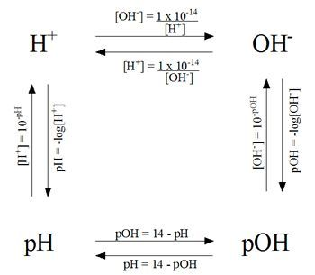 Calculations of pH, pOH, H+ and OH- - Helpful in chem ...