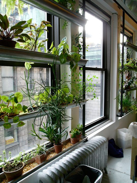 Window garden. Affordable platforms by nearby sunlight that decreases air pollution in your home and looks awesome!