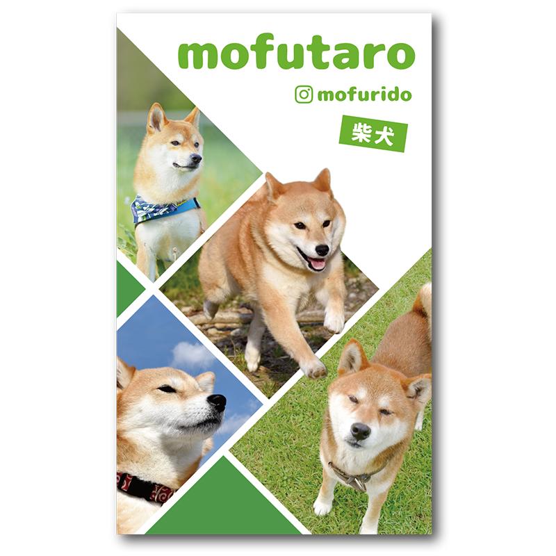 写真4枚まで使用可能 うちの子可愛すぎて1枚に絞れないという時に 多頭飼い用にも ペット 犬 デザイン