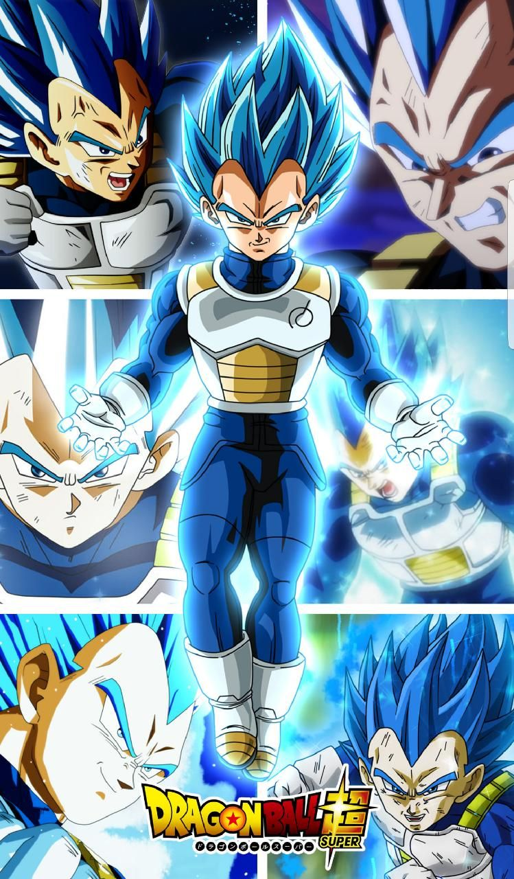 Download Vegeta ssj blue Wallpaper by silverbull735 0a