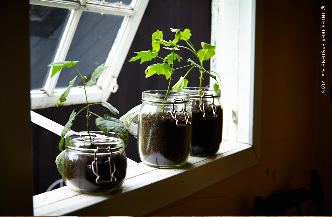 les bocaux en verre korken conviennent parfaitement la. Black Bedroom Furniture Sets. Home Design Ideas