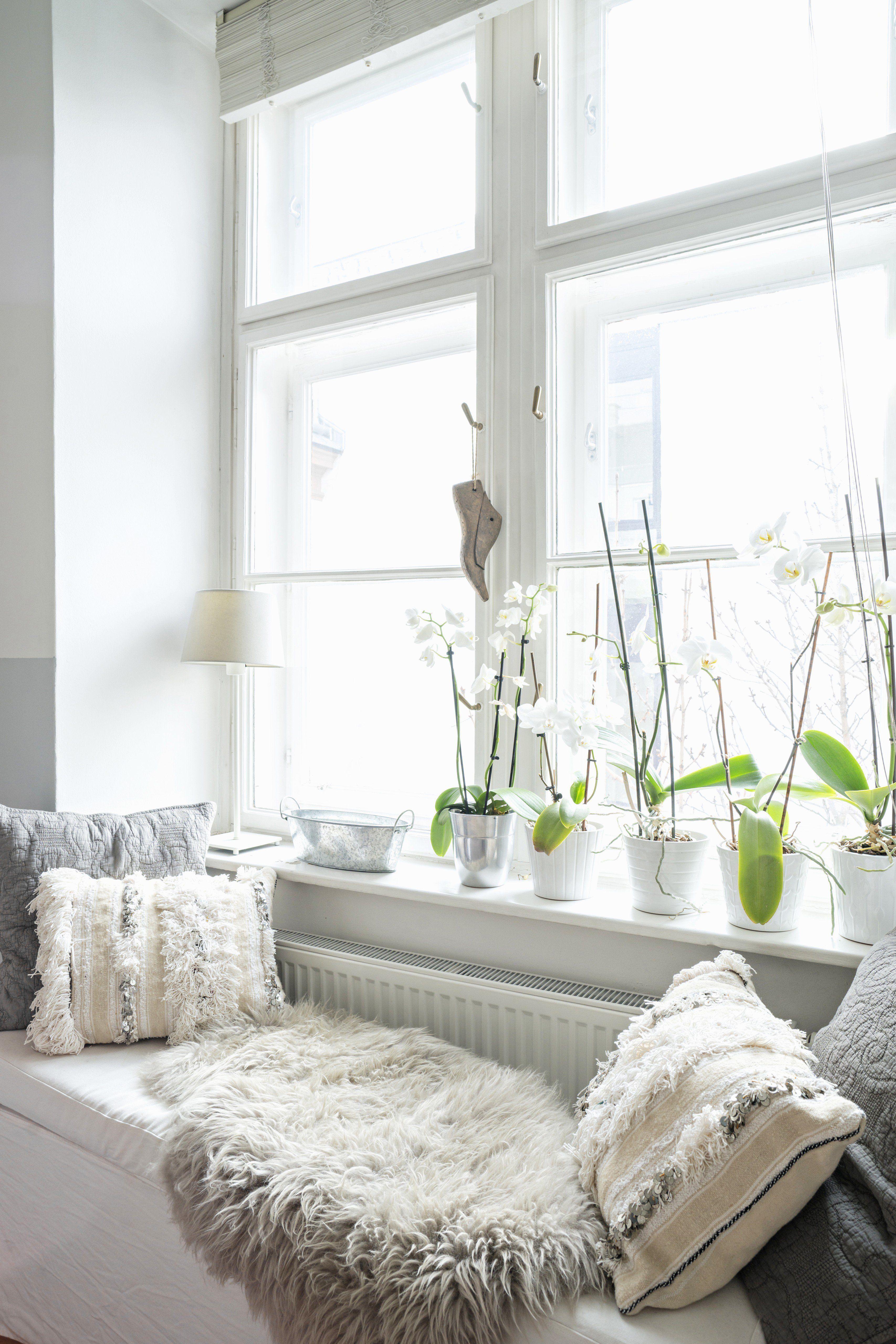 Fensterbänke dekorieren: 39 Style-Tricks und Ideen
