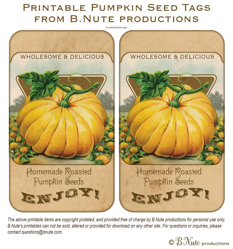 Free Printable Vintage Pumpkin Seed Tags and Roasted Pumpkin Seed
