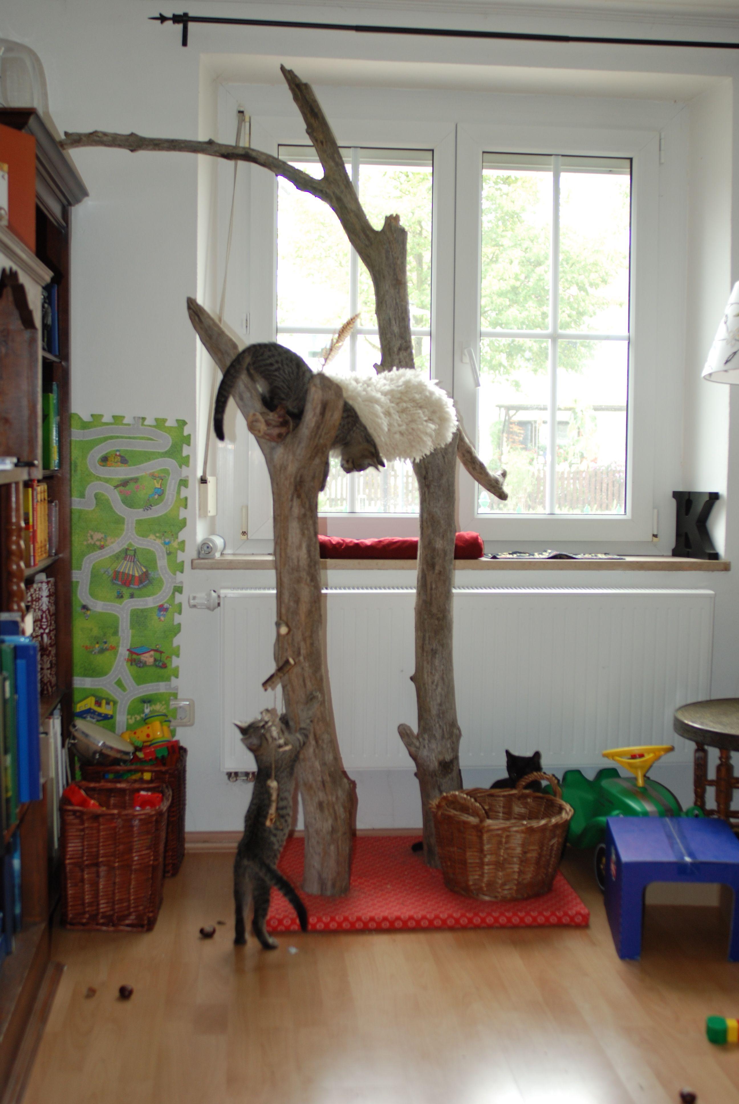 cats scratcher done katzenkratzbaum aus altem. Black Bedroom Furniture Sets. Home Design Ideas