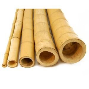 Backyard X Scapes 2 In D X 8 Ft H Natural Bamboo Poles 10 Piece Bundle Bamboo Poles Bamboo Poles For Sale Bamboo Garden