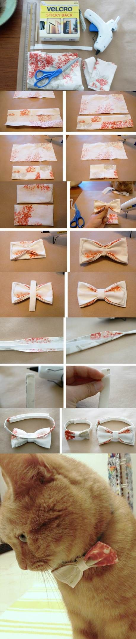12f39446cdc7 DIY No-Sew Bow Tie for Dogs and Cats | Do It Yourself | Diy dog ...