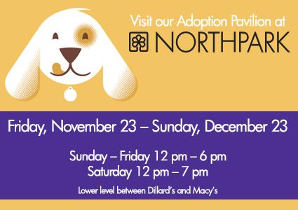 Now until Dec. 23, visit our SPCA of Texas Adoption