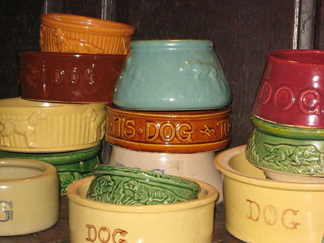 Vintage dog bowl collection