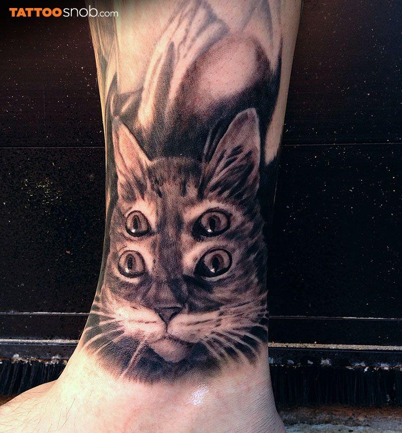 4 глаза кот