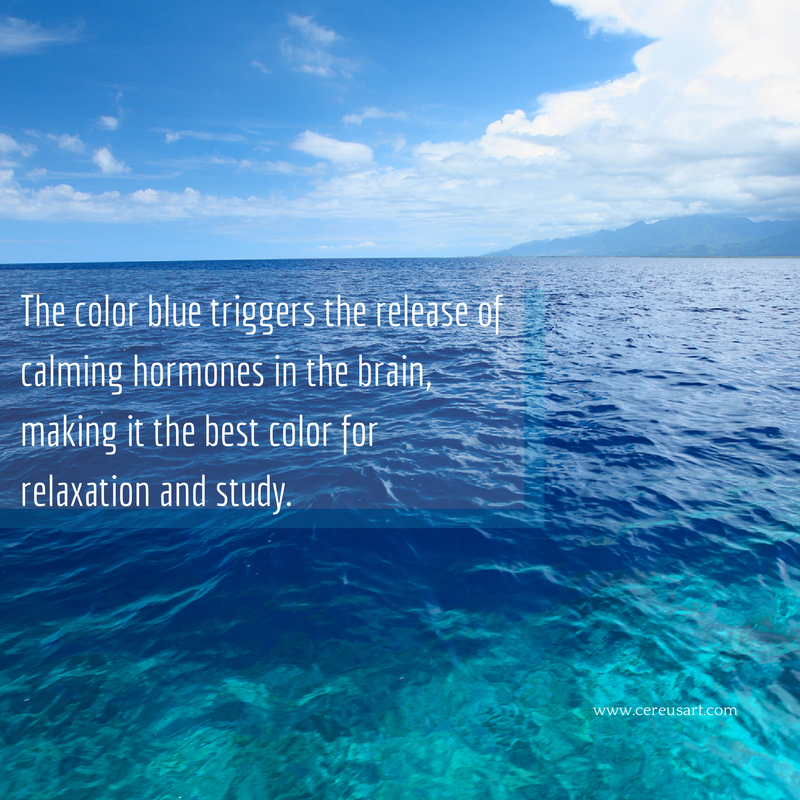 Is Blue A Calming Color the color blue triggers the release of calming hormones in the