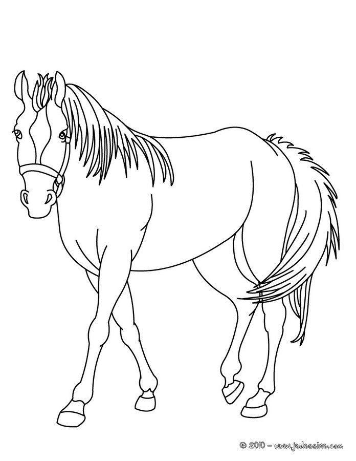 Coloriage De Cheval A Imprimer Horse Coloring Pages Farm