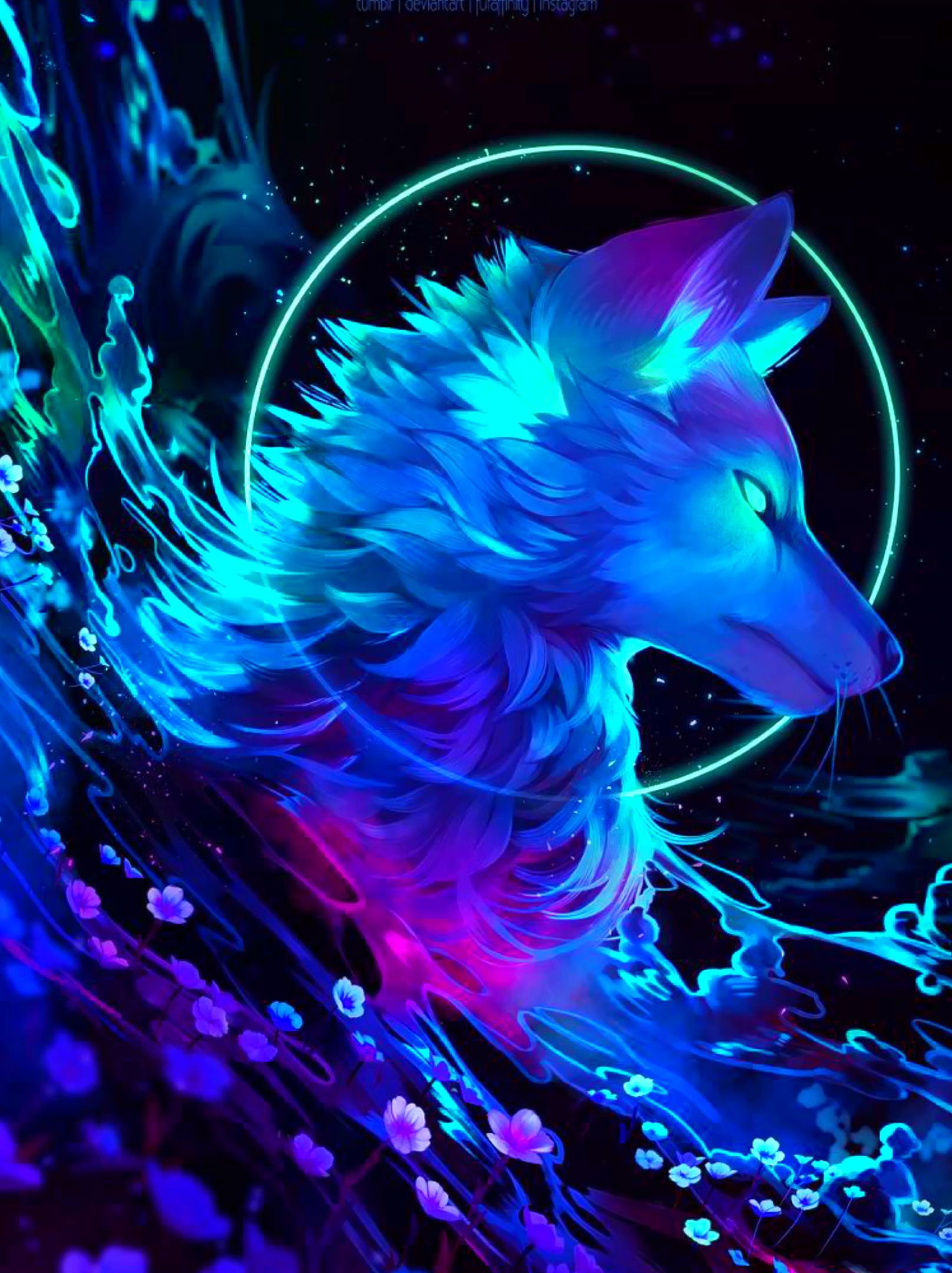 Dreamer In 2020 Anime Wolf Animal Drawings Fantasy Art