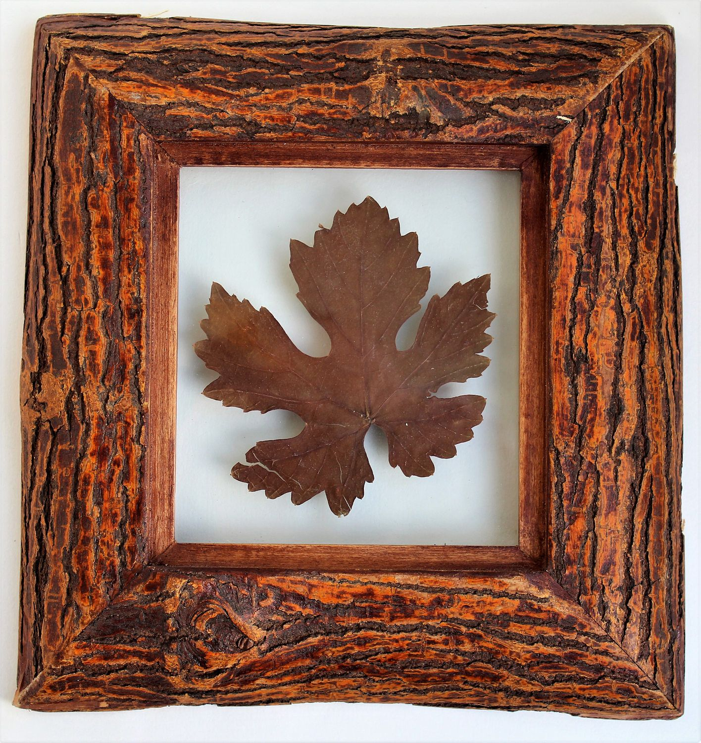 Rustic wood frame, handmade pressed plant, 9x9 inches, (23x23 cm\'s ...