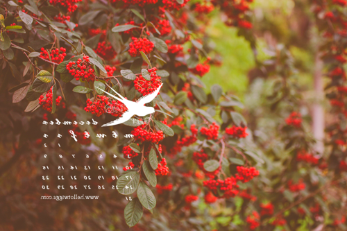 Hello December Wallpaper #hellodecemberwallpaper