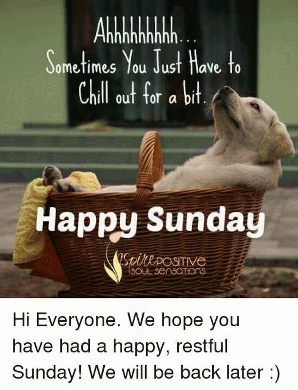 Funny And Happy Sunday Happy Sunday Quotes Sunday Humor Sunday