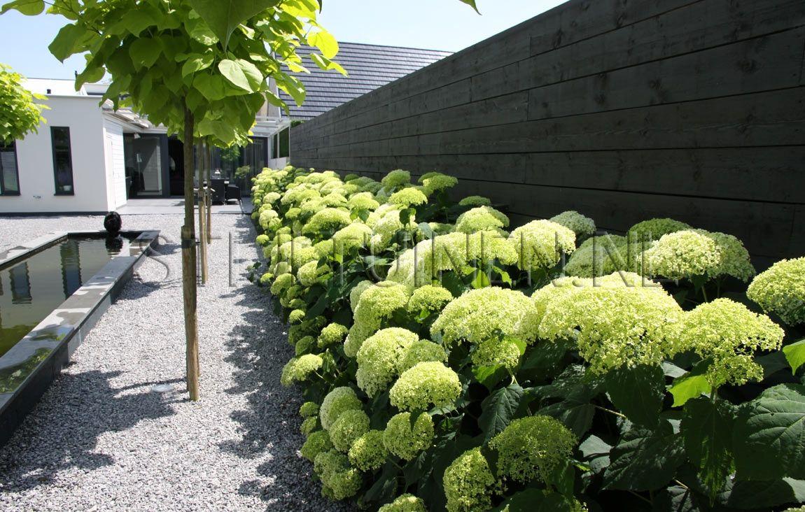 Garten ideen terrasse ideen gärten im freien kann zaun weißen hortensien villen landschaftsbau