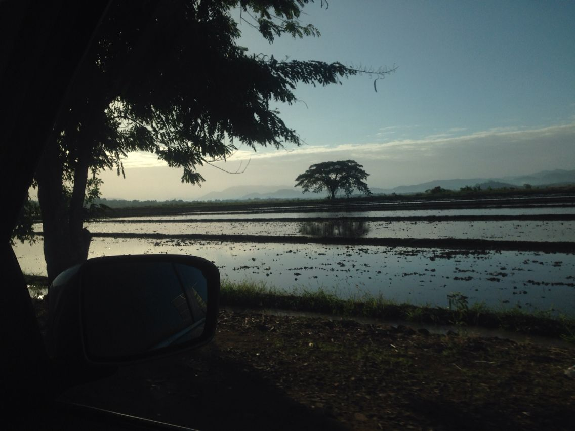 Naturaleza Dominicana