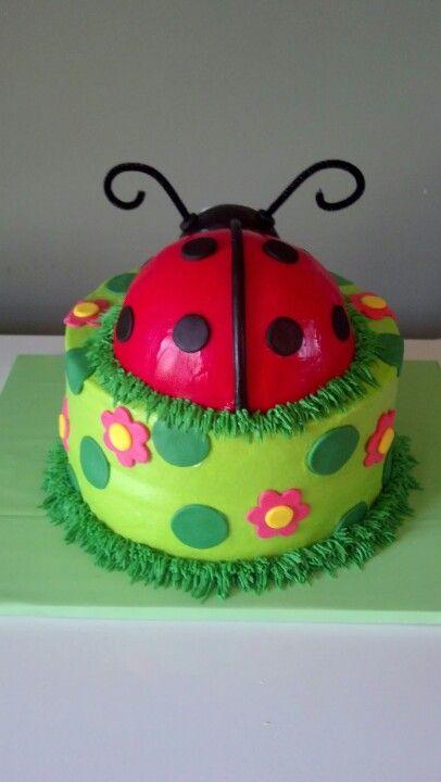 Ladybug Birthday Cake Birthday Cakes Pinterest Ladybug