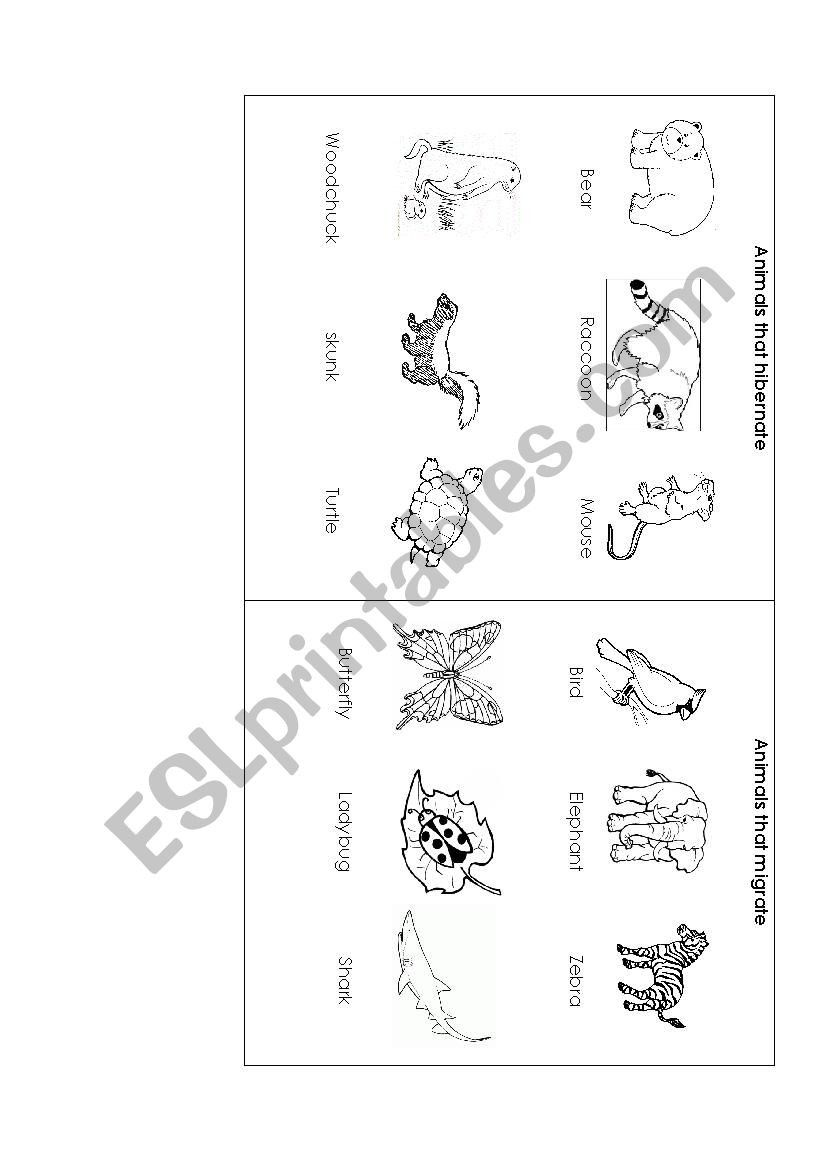 30 Animals That Hibernate Worksheet Animals That Hibernate Poetry Worksheets Worksheets [ 1169 x 826 Pixel ]