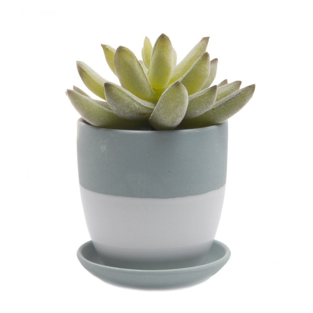 Chive Dyad Small Round Succulent And Cactus Pot Clay Planter With Drainage Hole And Saucer Matte Finish Bulk Clay Planters Container Plants Succulent Planter