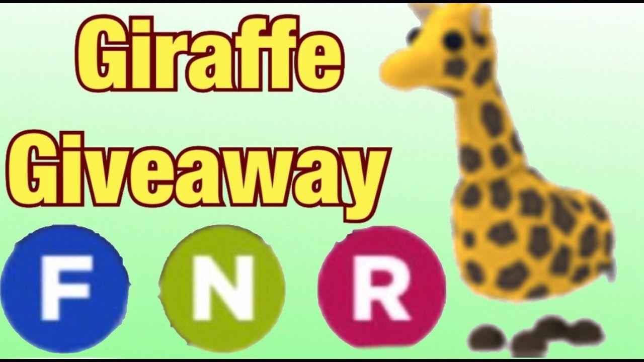 1ad317537919fa3146bd8b661fa7586a - How To Get A Giraffe In Adopt Me Roblox