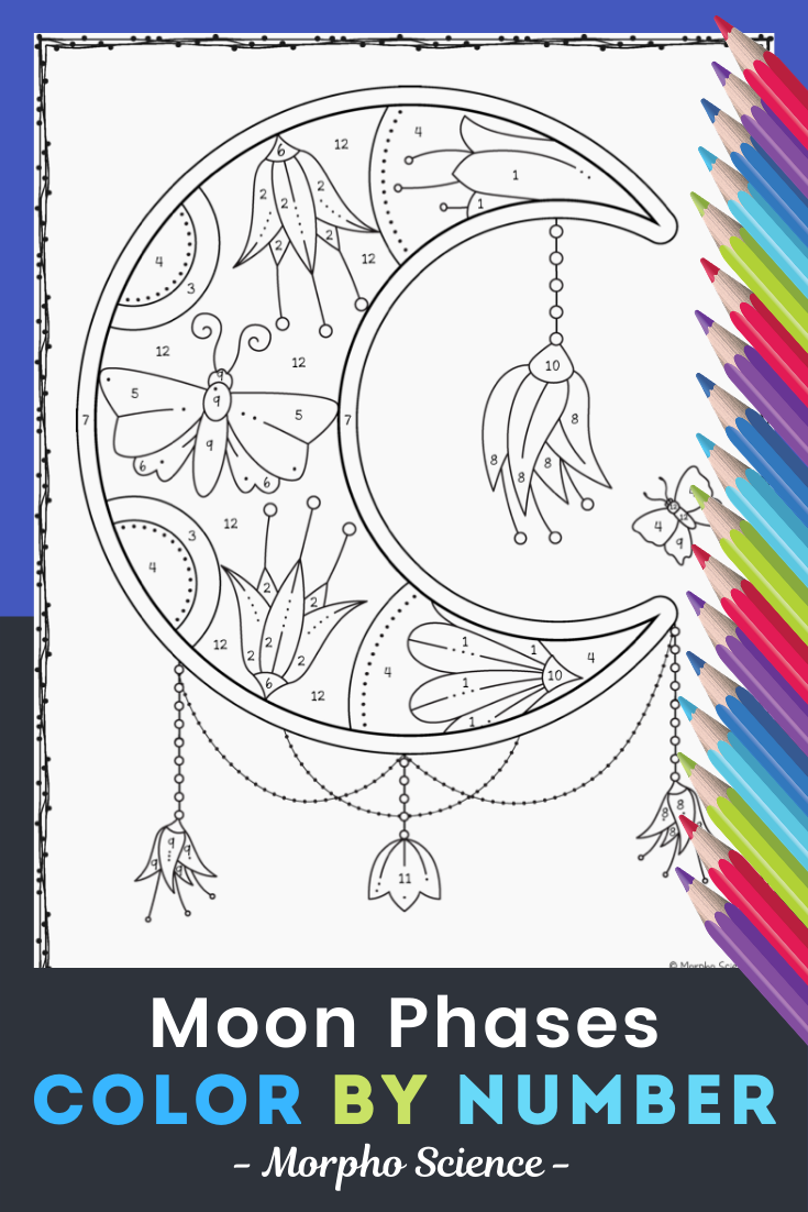 Moon Phases Color By Number Moon Coloring Pages Moon Phases Color By Numbers [ 1102 x 735 Pixel ]