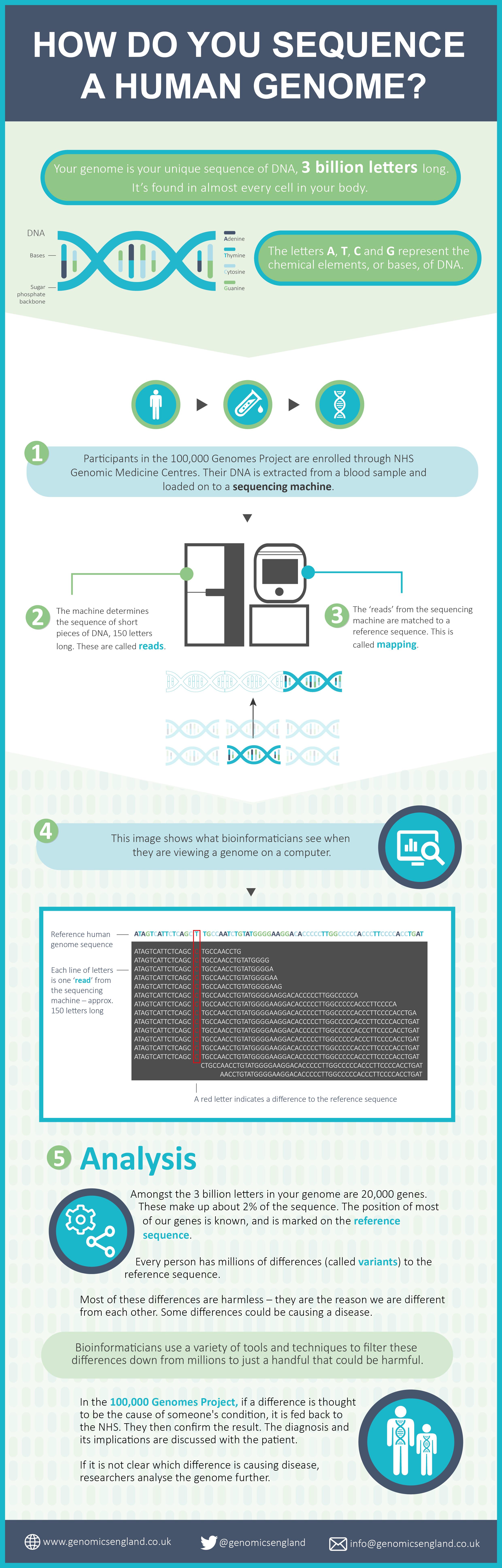 Genome Sequencing Genomics England Genome Sequencing Genome Human Genome
