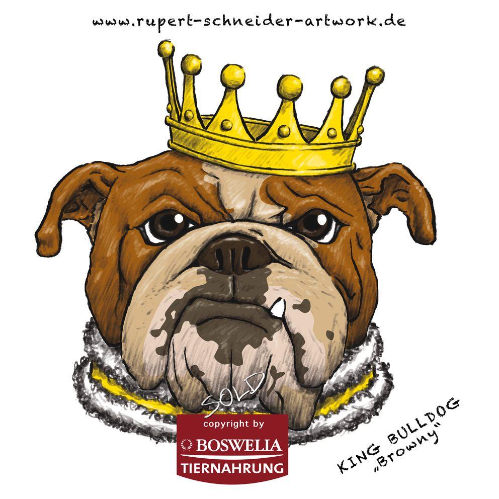 King Bulldog Browny Illustration By Rupert Schneider Animales Bulldog Bulldog Ingles