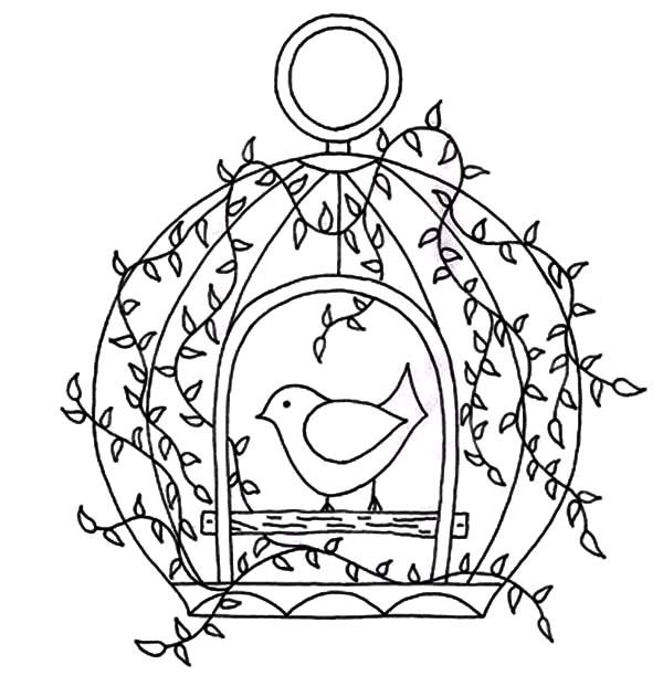 bird cage bird cage with door open coloring pages bird