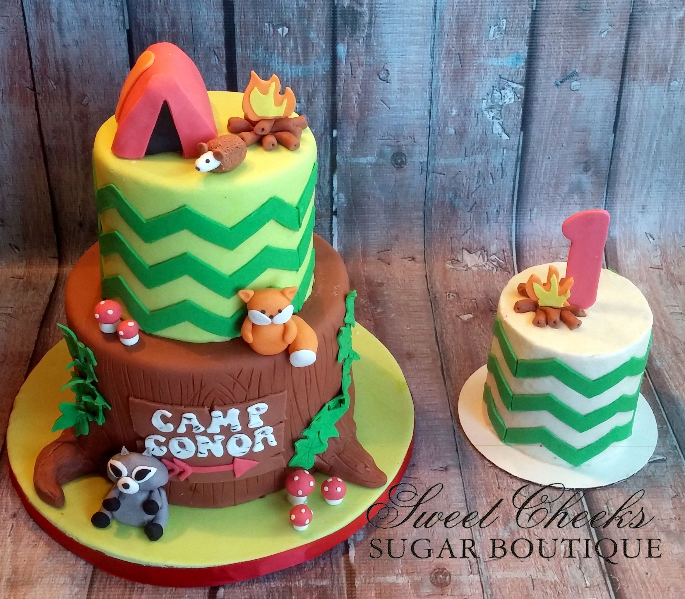 A camping themed first birthday cake and smash cake for