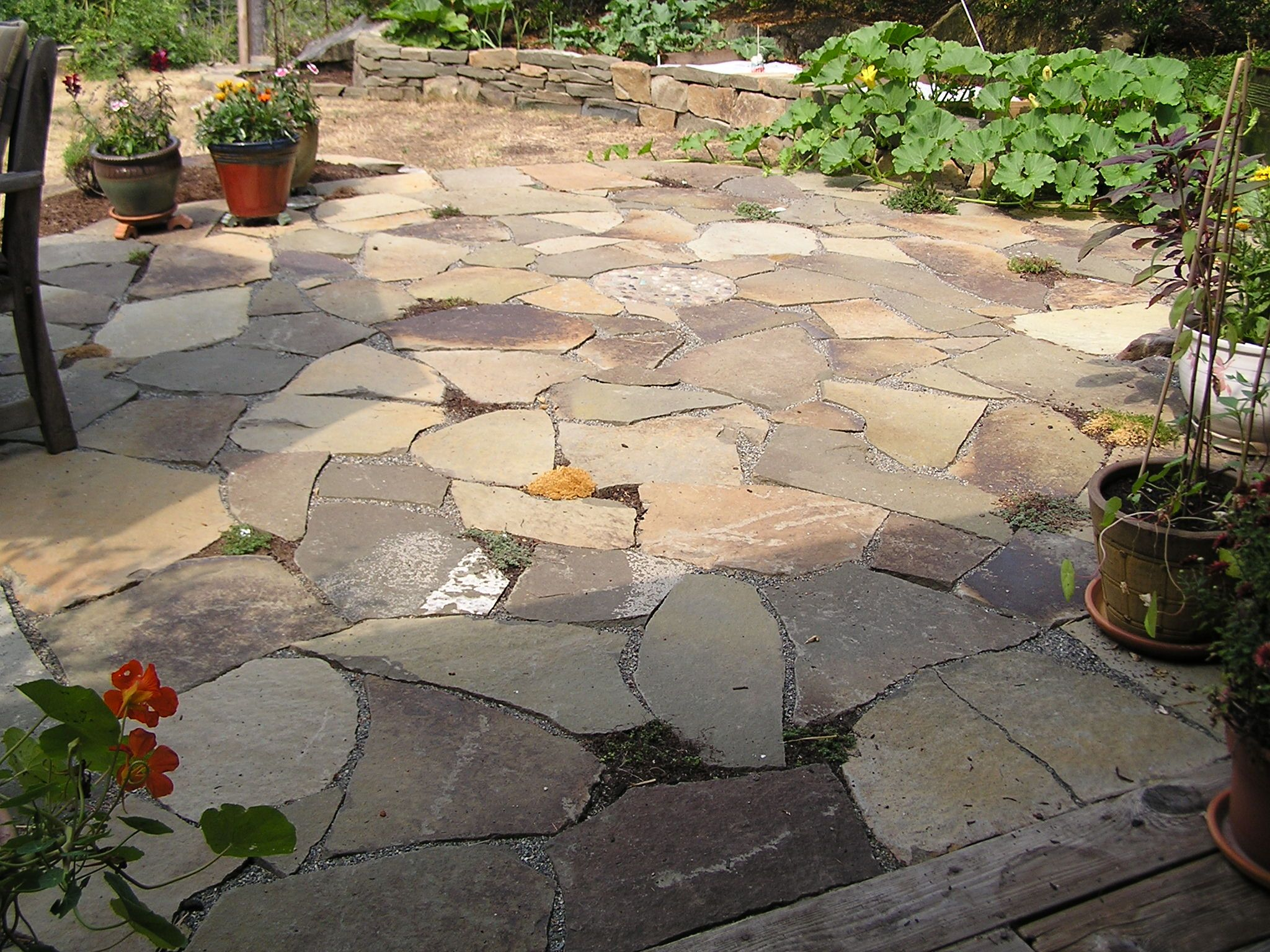 Patio | Beautiful Sandstone Patio Starting To Get Planted With Thyme,  Drystack .