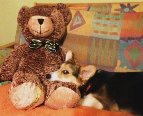 Jeli and her bear. Such cuteness!!!