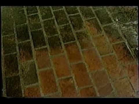 Brick Cleaning With Oxygen Bleach Mix With Water Pour On