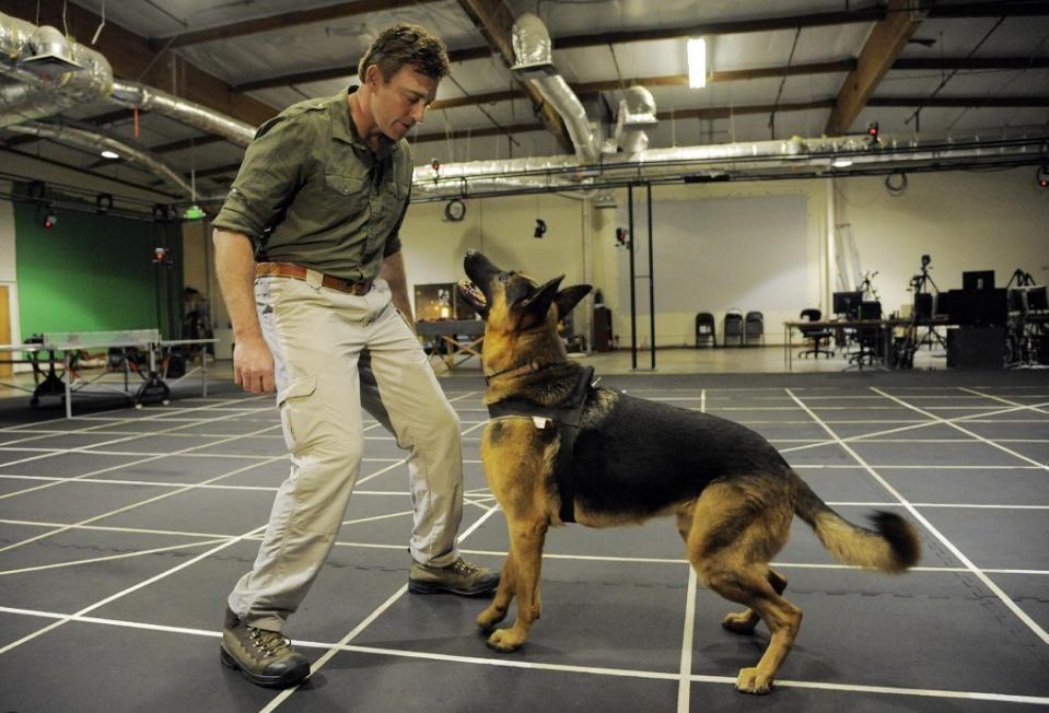 Dog Of War Meet Call Of Duty S New Barkout Star Call Of Duty