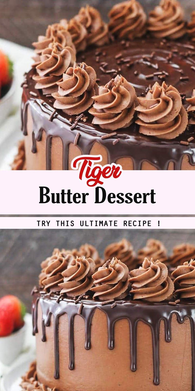 Chocolate Layer Cake In 2020 Best Dessert Recipes Chocolate Layer Cake Desserts