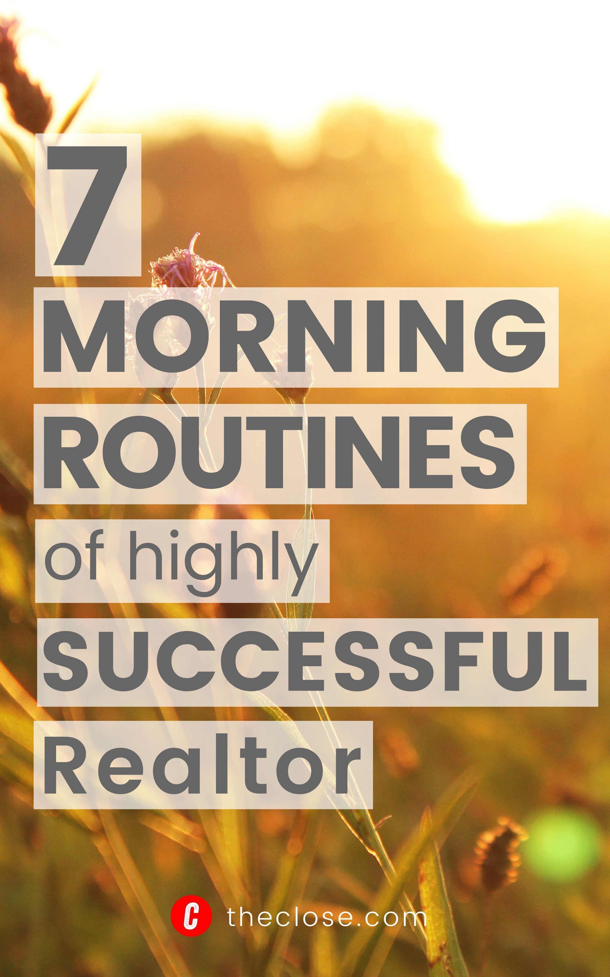 7 Morning Routines of Highly Successful Realtors