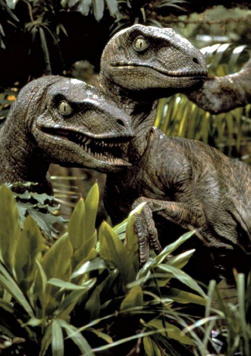 Jurassic Park 1993 Jurassic Park Jurassic Park 1993 Jurassic Park Movie