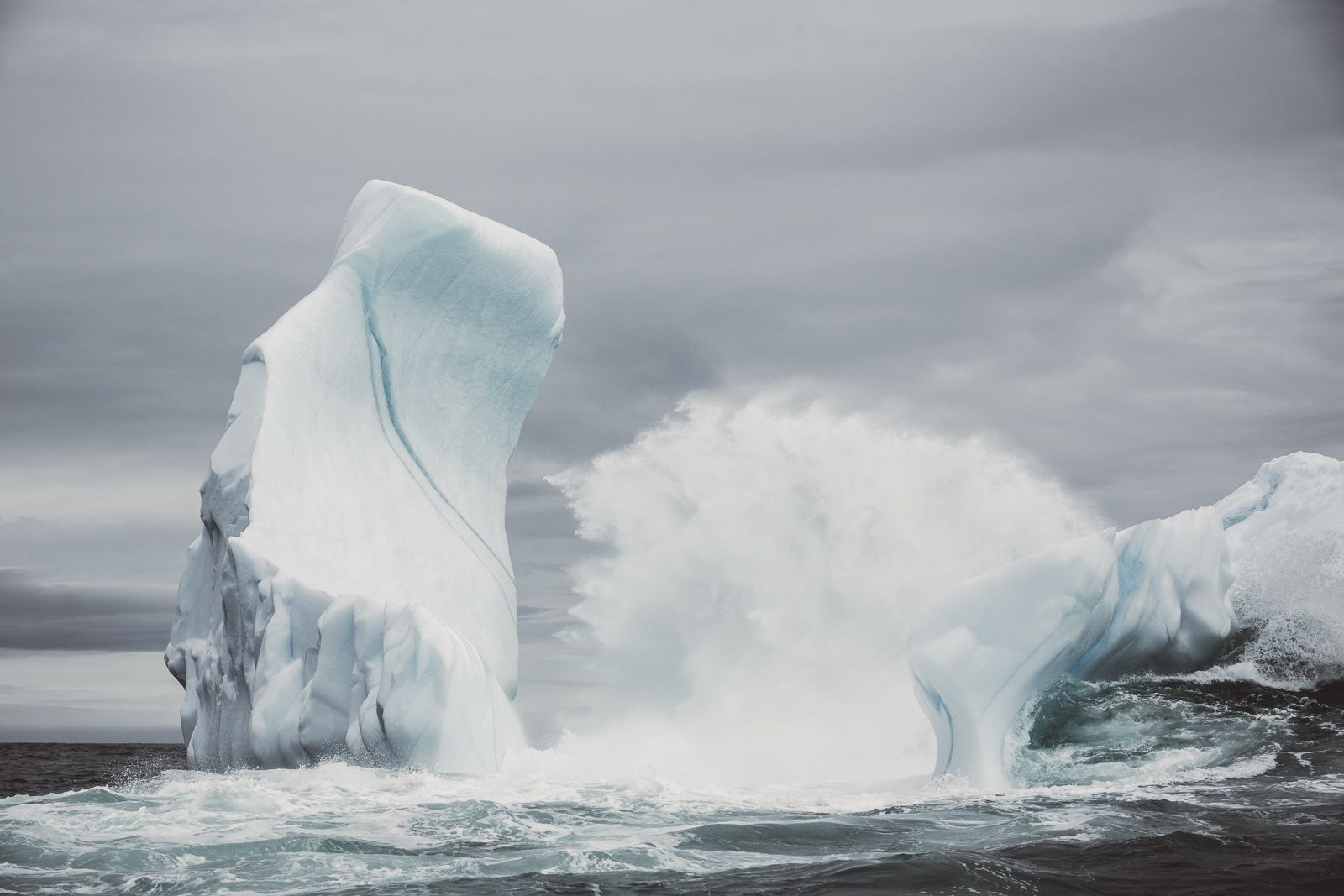 Newfoundland Icebergs