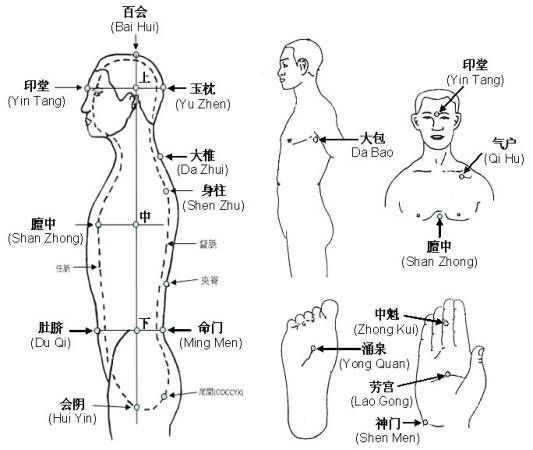 The Idiot's Guide to Taoist Alchemy Qigong