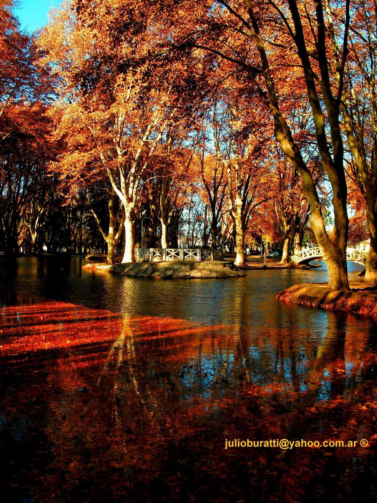 Vista del otoño en el parque Sarmiento en Río Cuarto-Córdoba ...
