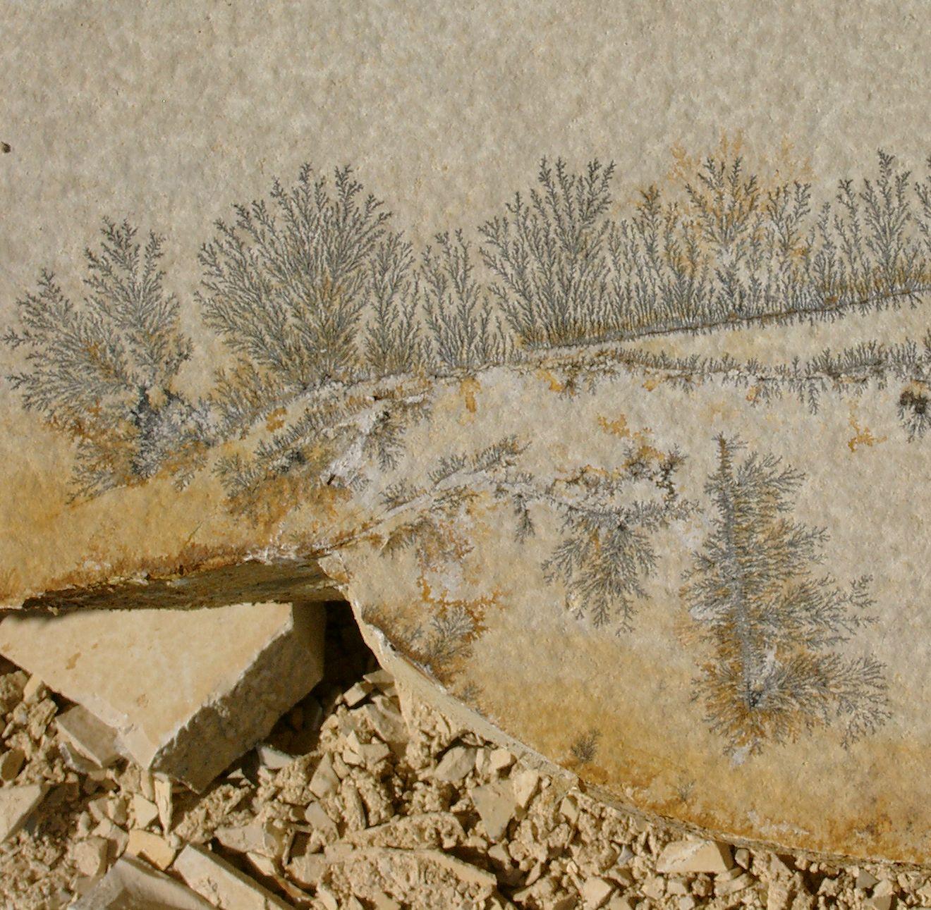 Piedra f sil irregular solnhofen dendritas piedras - Pavimentos exteriores antideslizantes ...