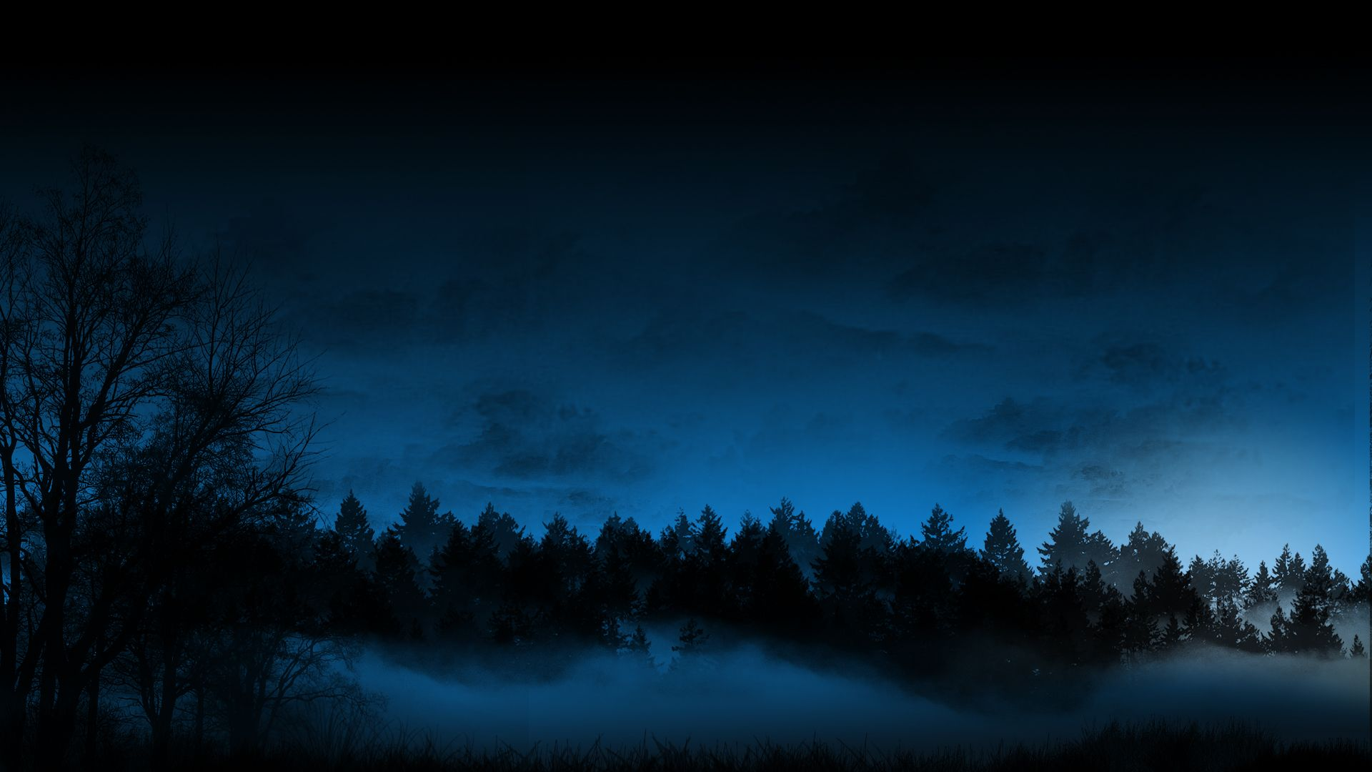 dark forest | wallpaper dark background photography forest ...
