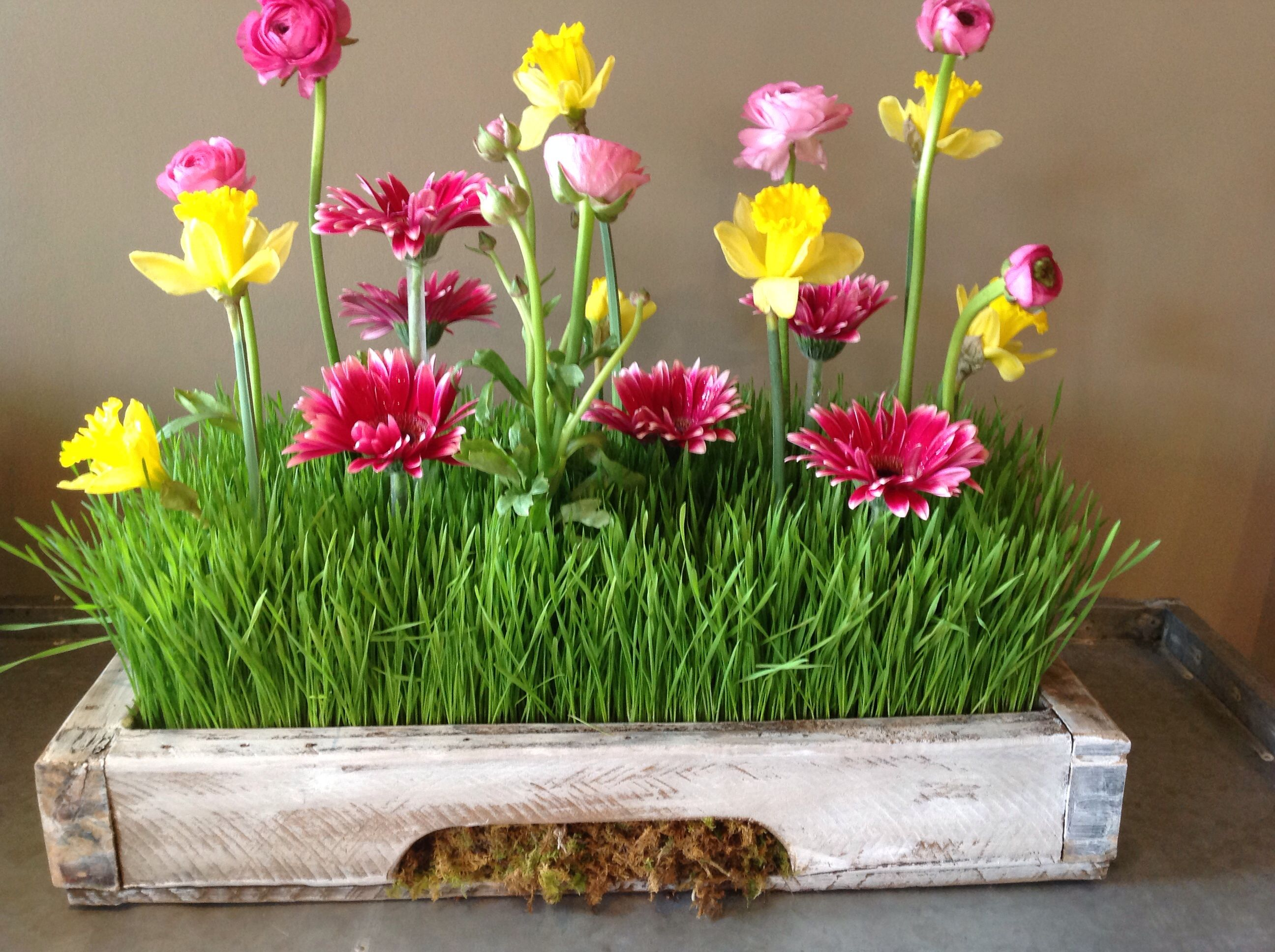 Wheat grass centerpieces flowers by larry pinterest