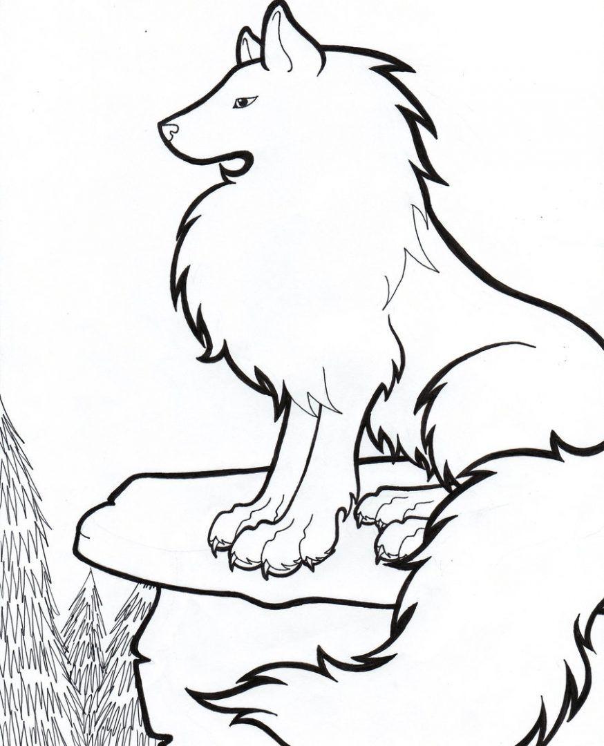 Resultado De Imagen Para Lobo Para Colorear Lobo Dibujo Lobo Para Pintar Dibujo De Lobos